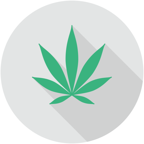 CalCannabis Cultivation Licensing Division icon